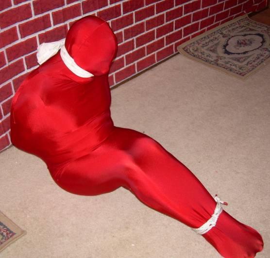 Darlex bondage sleep sack
